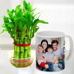 Exclusive Personalized Coffee Mug with Two Tier Bamboo Plant to Adugodi