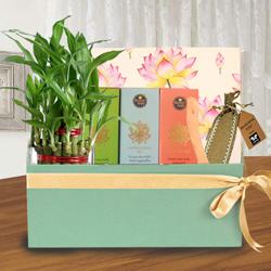 Healthy Healing Gift Combo for Mother to Allahabad