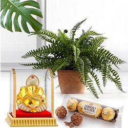 Festive Present of Bostern Fern with Chocolate N Vinayak Murti to India