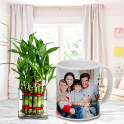 Bright Selection of Two Layer Good Luck Bamboo Tree in Personalized Coffee Mug to Abohar
