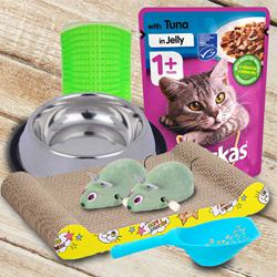 Wonderful Kitten Gifts Hamper to Aizwal