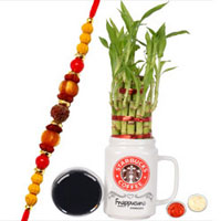 Attractive Combo of Rudraksh Rakhi with Bamboo Plant, Message Card N Roli Tika N Chawal to Cochin