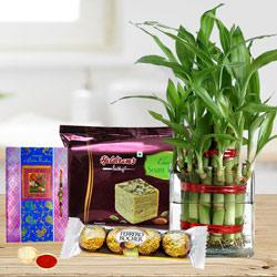 Eco Friendly Rakhi Assortment Gifts to Tirunelveli