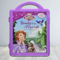 Learn n Play with Disnesys Princes Sofia Story Book n Magnetic Play Set to Ambabari