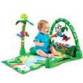 Fisher Price�s Merry Vocation Gym to Bardez