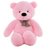 Adorable Pink Teddy Bear to Batala