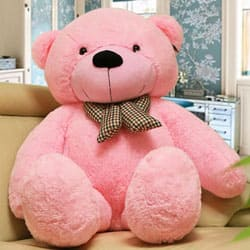 Wonderful Giant Teddy Bear (60 in) to Agroli