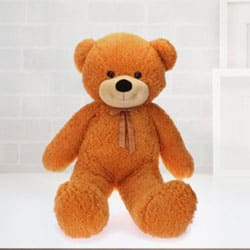 Pretty Teddy Bear (36 in) to India