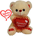 Someone Special Love Teddy to India