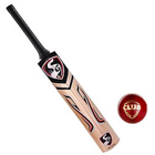 Playing Cricket with SG Cobra Gold Kashmir Willow Cricket Bat (6, 950 - 1250 g) and SG Club Cricket Ball to Gurgaon