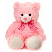 Soft Teddy for Birthday Gift to Ashok Nagar