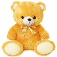 Provocative Stuffed Celebration Special Cream Teddy Bear to Berhampur