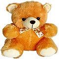 Soft and Cute Master Teddy Bear (12 inches) to Ambala