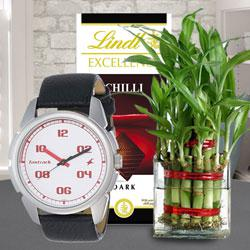 Irresistible Lindt Chocolate with Bamboo Plant N Fastrack Watch to Amadalavalasa