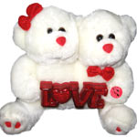Twin Teddy with